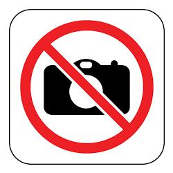 Almafa gyümölcsökkel 7,5 cm