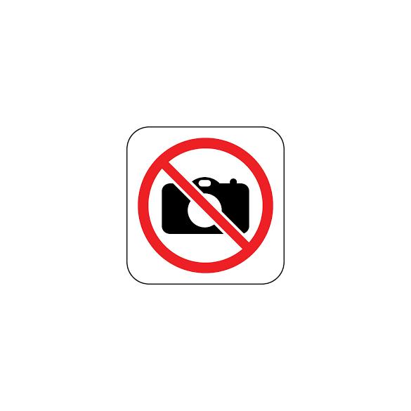 Rye Field Model - 1:35 Sturmmörser Tiger teljes belsővel - átlátszó kiadásban - makett